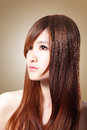 Brown hair beautiful woman healthy long hair isolated brown background asian beauty Stock Image