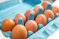 Brown hen eggs in a blue box cardboard Royalty Free Stock Images