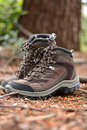 Brown Hiking Boots I