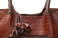 Brown leather bag women s fashion Royalty Free Stock Images