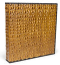 Brown leather snake photo album cover Royalty Free Stock Photo