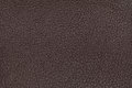 Brown leather texture background. Closeup photo. Reptile skin. Royalty Free Stock Photo