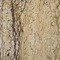 Brown limestone texture Royalty Free Stock Image