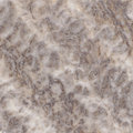 Brown marble texture Stock Photography