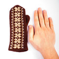 Brown mitten an hand Stock Photo