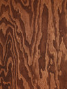 Brown plywood abstract wood texture contrast background Royalty Free Stock Photography