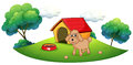 A brown puppy playing ouside the dog house illustration of outside on white background Stock Image