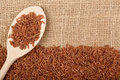 Brown rice on burlap fabric Royalty Free Stock Images