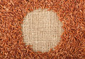 Brown rice on burlap fabric forming a circle Stock Images