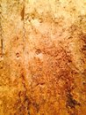 Brown rough tree bark background texture Stock Photography