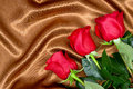 Brown satin fabric and roses closeup Royalty Free Stock Photo