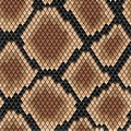 Brown snake seamless pattern patternfor background or fashion design Royalty Free Stock Photo