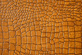 Brown snakeskin or crocodile texture Royalty Free Stock Images