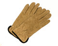 Brown suede gloves with dark trim Royalty Free Stock Photography