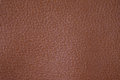 Brown texture background from lather wallet. Royalty Free Stock Photo
