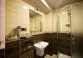 Brown theme bathroom Royalty Free Stock Photo
