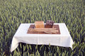 Brown and white bread on table on summer wheat field Royalty Free Stock Photo