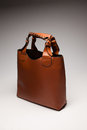 Brown womans bag Stock Photography