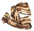 Brown women scarf Royalty Free Stock Photo