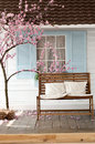 Brown wooden bench with pillow near the cherry blossoms Royalty Free Stock Photo