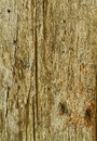 Brown wooden texture of wall Stock Photography