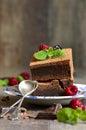 Brownie adornados con la hoja de la frambuesa y de la menta Foto de archivo