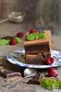 Brownie décorés de la feuille de framboise et de menthe Image libre de droits