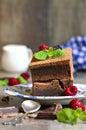 Brownie décorés de la feuille de framboise et de menthe Photographie stock libre de droits