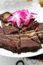 Brownie dessert tray Royaltyfria Bilder