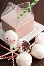 Brownie peppermint cake pops and glass milk carton filled with chocolate milk and colorful straw Royalty Free Stock Photo
