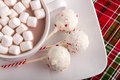 Brownie peppermint cake pops on white plate with cup of hot chocolate with marshmallows Stock Image