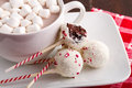 Brownie peppermint cake pops on white plate with cup of hot chocolate and marshmallows Royalty Free Stock Photo