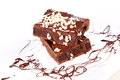 Brownie slices of a on a plate covered with chocolate and nuts Royalty Free Stock Photo