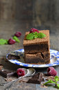 Brownies decorated with raspberry and mint leaf on rustic background Stock Images