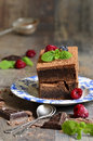 Brownies decorated with raspberry and mint leaf on rustic background Royalty Free Stock Image