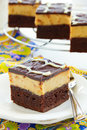 Brownies with peanuts and chocolate Stock Images