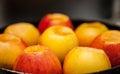 Brownish apples many of closeup shot Stock Image