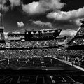 Browns Sunday at First Energy Royalty Free Stock Photo