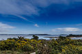 Brownsea island Stock Image