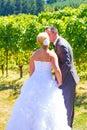 Brud och brudgum romantic kiss Arkivbilder