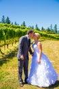 Brud och brudgum romantic kiss Arkivfoton