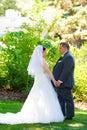 Bruid en bruidegom wedding day Royalty-vrije Stock Afbeelding