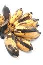 Bruised banana on white background Royalty Free Stock Image