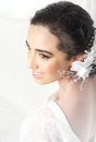Brunette Bride Stock Photo