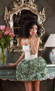 Brunette in elegant dress over vintage mirror classic interrior Stock Image