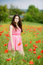 Brunette in poppy field girl Stock Images