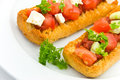 Bruschetta with tomato,cheese and other stuffing Stock Images