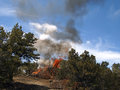 Brush fire a burning in a pinyon juniper shrub land Royalty Free Stock Photos