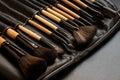 Brush set for make-up Royalty Free Stock Photo