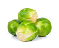 Brussel sprout isolated on the white background Royalty Free Stock Photo